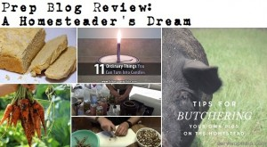 Prep Blog Review: A Homesteader's Dream