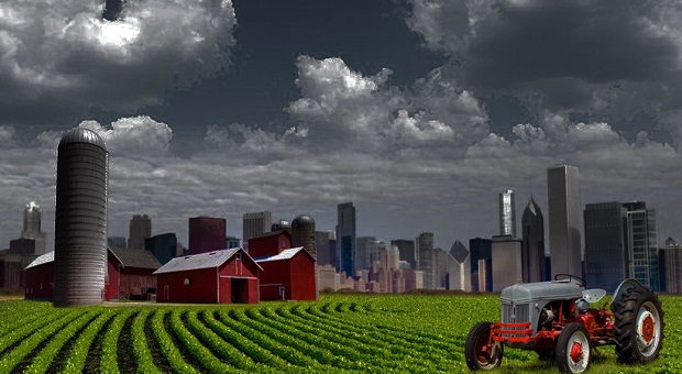 city versus rural