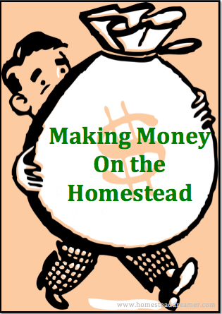Homestead money