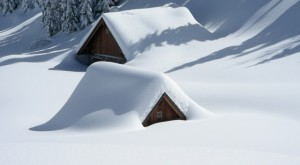 Do You Know How To Use Snow For Insulation?