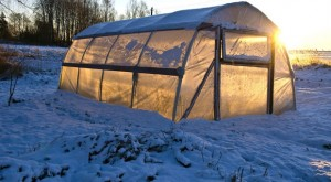 DIY Projects: 4 Ways To Heat A Greenhouse