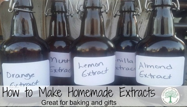 homemade-extracts-post