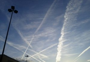 Did Chemtrails Murder Prince And Merle?