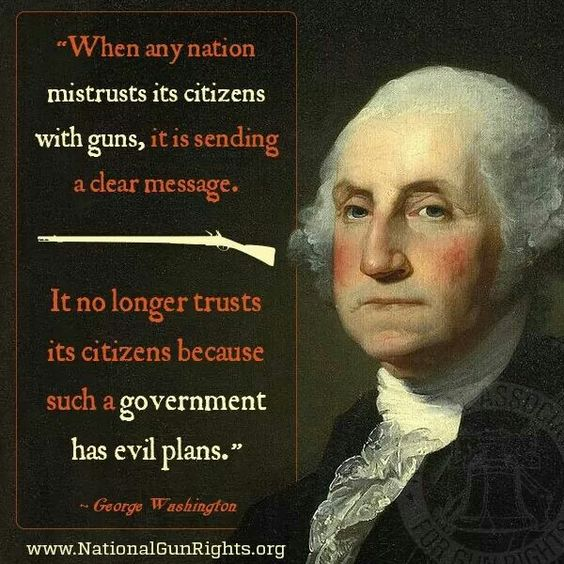 guns quote