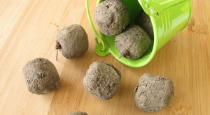 Prepper Project: 3 Ways To Make Seed Bombs