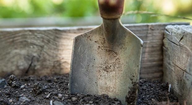 svp soil