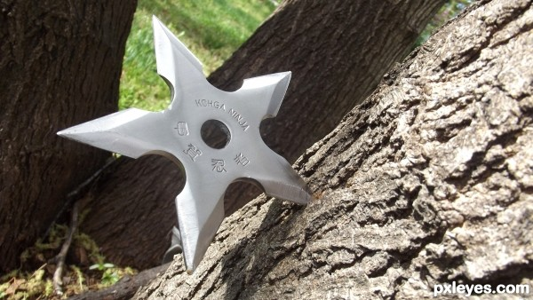 throwing star
