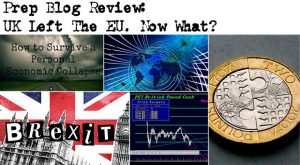 Prep Blog Review: UK Left The EU. Now What?
