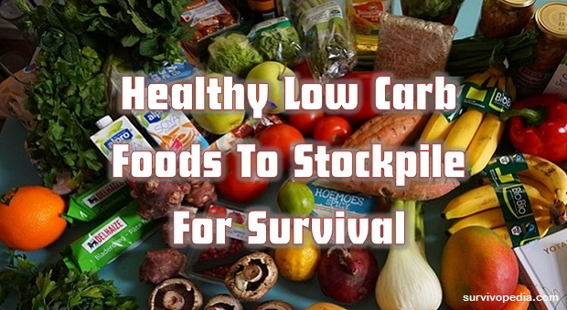 Survivopedia low carbs
