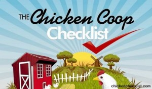 Here's The Right Way To Build A Chicken Coop!
