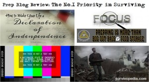 Prep Blog Review: The No.1 Priority in Surviving