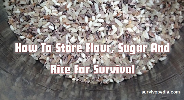 Survivopedia store rice