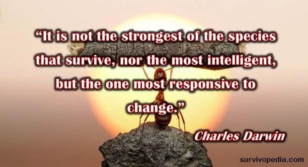 survival quote