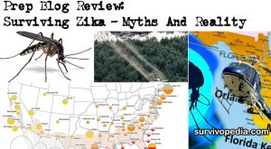 Prep Blog Review: Surviving Zika – Myths And Reality