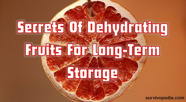 Survivopedia dehydrating fruits
