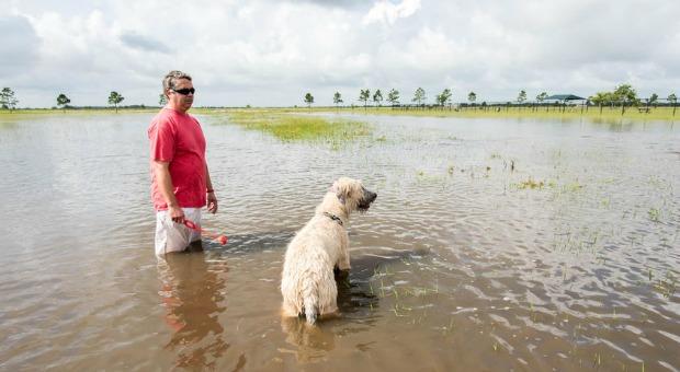 Danger After Floods