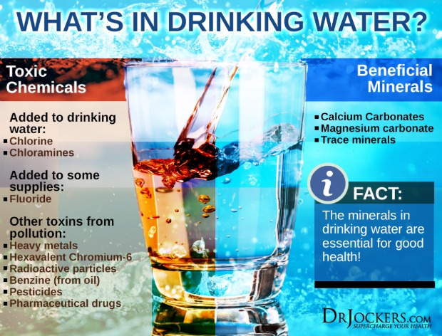What's in your water