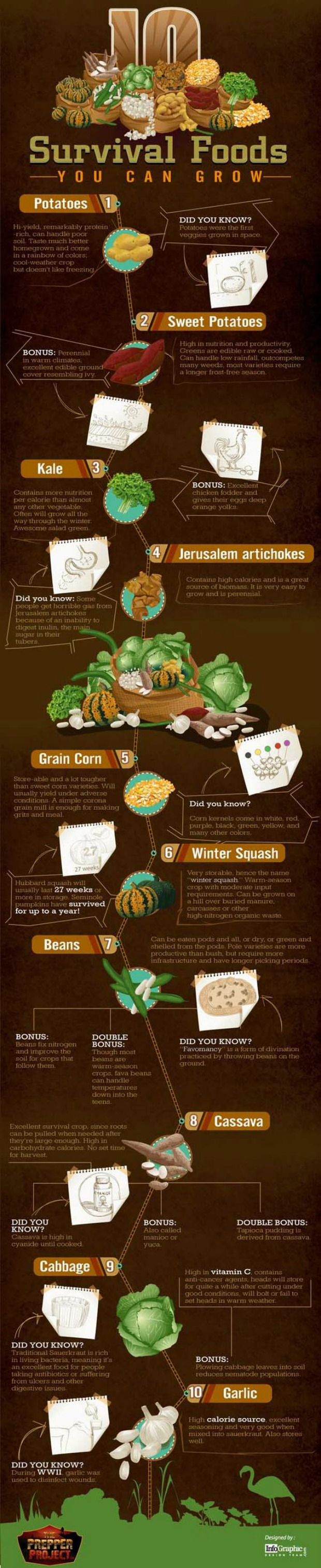 survival-foods-to-grow