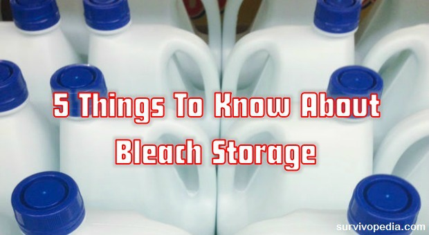 Things To Know About Bleach Storage