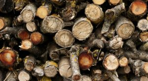 Four Common Mistakes When Burning Wood