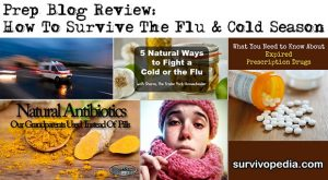 Prep Blog Review: How To Survive The Flu & Cold Season