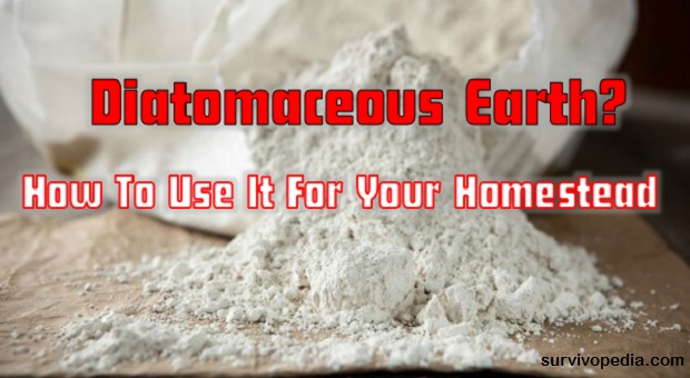 survivopedia-diatomaceous-earth-heres-how-to-use-it-for-your-homestead1