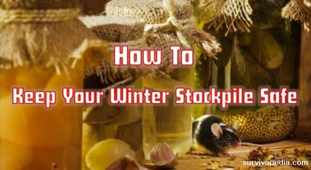 survivopedia-how-to-keep-your-winter-stockpile-safe1