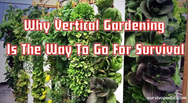 Vertical Garden Survival