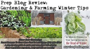 Prep Blog Review: Gardening & Farming Winter Tips