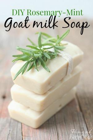homemade-rosemary-mint-goat-milk-soap-recipe