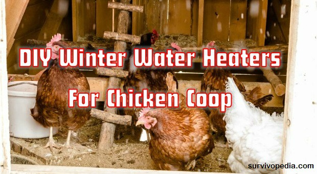 DIY Water Heater Coop
