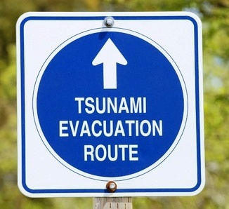 9343130 - tsunami roadsign near pescadero, california
