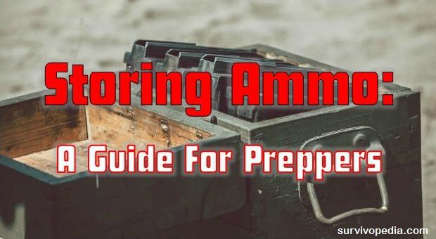 Storing Ammo