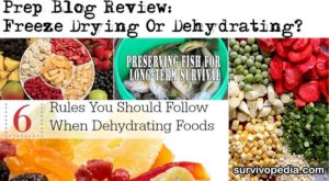 Prep Blog Review: Freeze Drying Or Dehydrating?