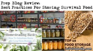 Prep Blog Review: Best Practices For Storing Food