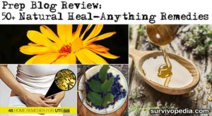 Prep Blog Review: 50+ Natural Heal-Anything Cures