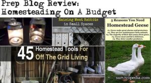 Prep Blog Review: Homesteading On A Budget