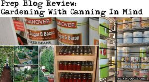 Prep Blog Review: Gardening With Canning In Mind