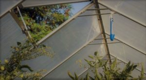 How To Build A Walipini Greenhouse