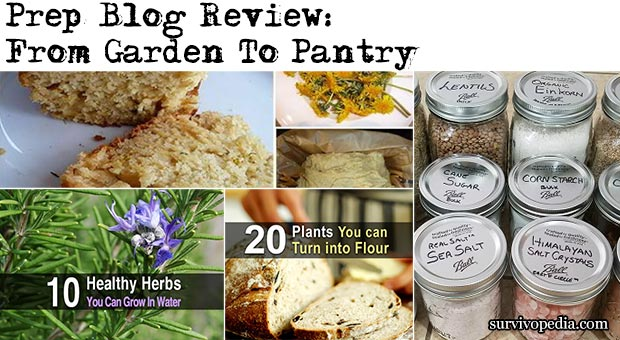 Prep Blog Review: From Garden To Pantry