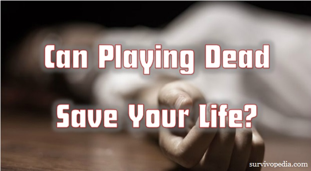 Can_playing_dead_save_your_life