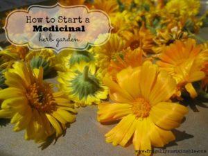 medicinalherbgarden-feature-300x225.jpg