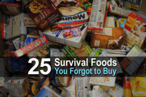 25-survival-foods-you-forgot-to-buy-wide-2-300x200.jpg