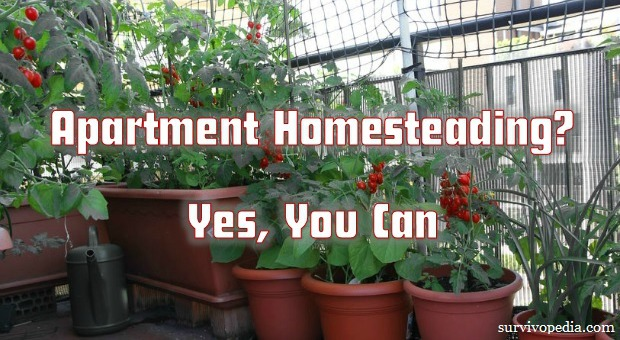 Survivopedia_Apartment_Homesteading_Yes_You_Can