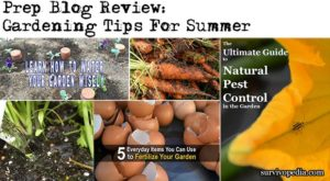 Prep Blog Review: Gardening Tips For Summer