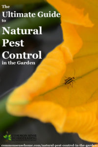 natural-pest-control-guide-1-200x300.jpg