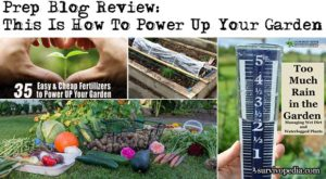 Prep Blog Review: This Is How To Power Up Your Garden