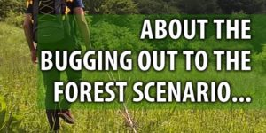 bugging-out-to-the-forest-300x150.jpg