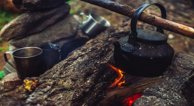Busting Top 6 Survival Myths That Might Get You Killed | Survivopedia